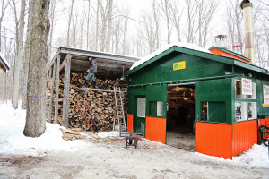 sugarbush20